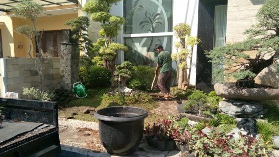 Jasa Pembuatan Taman Surakarta Wa 085725487409
