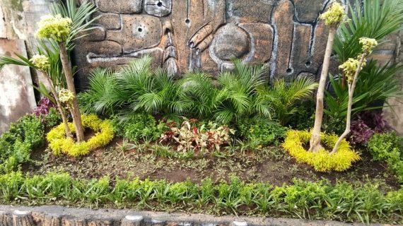 Jasa Pembuatan Taman Salatiga Wa 085725487409